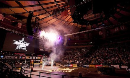 Professional Bull Riders Bucking Attendance Records