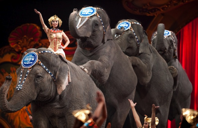 Circus in L.A. in jeopardy