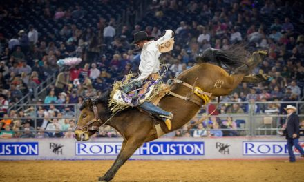 Houston Livestock Show & Rodeo Shines Through Rain