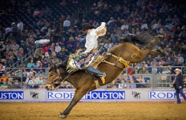 Houston Livestock Show & Rodeo Shines Through Rain