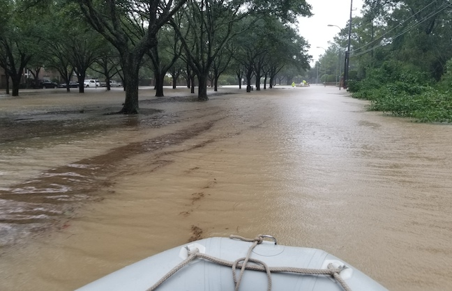 Did Ned Collett Join the Cajun Navy?